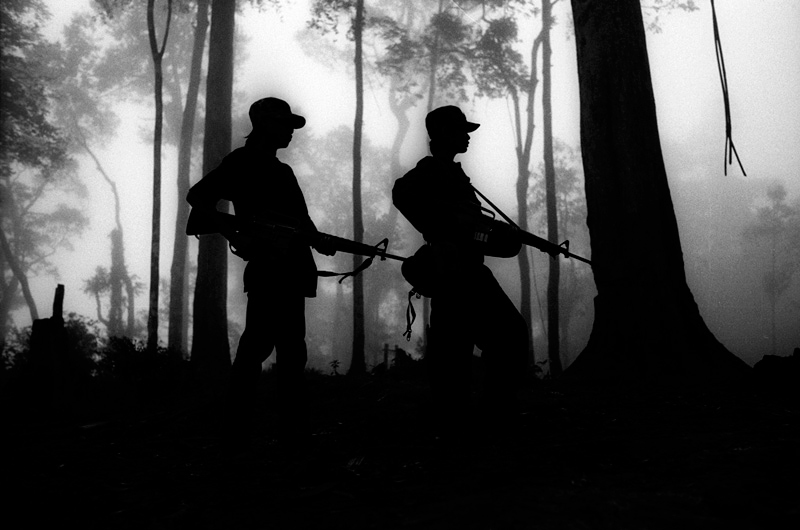 Young soldiers in the early morning fog.