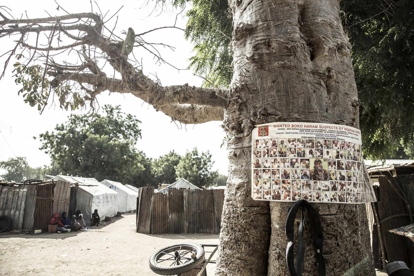 A sign with Boko Haram's most wanted suspects is tied up to a tree in Bama Refugee camp.