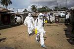 grid_commissions_EbolaInWestAfrica