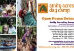 2014_Amity_Promotional_Postcard-2
