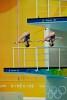 Olympicweb_86