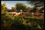 Haiti_2008-032