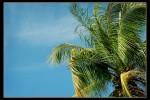 Haiti_2008-145