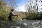 Michael Whelchel casts his line into Oconaluftee River in Ravensford, NC.
