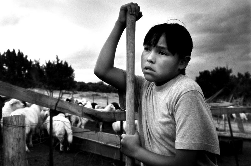 Heather, herding her family's sheep