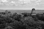 Guate_14_tikal_IMG_2351