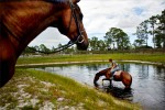 George, a stabled horse at Savannah Pines horse stable, takes trainer, Ashlee Nacoma, for a ride through a small pond while on their way out for a ride on Monday.photo by: Amanda Voisard
