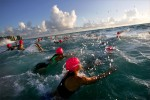 Women triathletes dive into the water during the final race in the Singer Island Triathlon series.photo by: Amanda Voisard