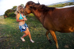 A feral horse charges Alexis Baun, 18, of Orchard Park, N.Y. as she attempts to back away quickly while visiting Assateague Island National Seashore with her family on July 7, 2011  Baun only suffered minor injuries to her hand from the confrontation.
