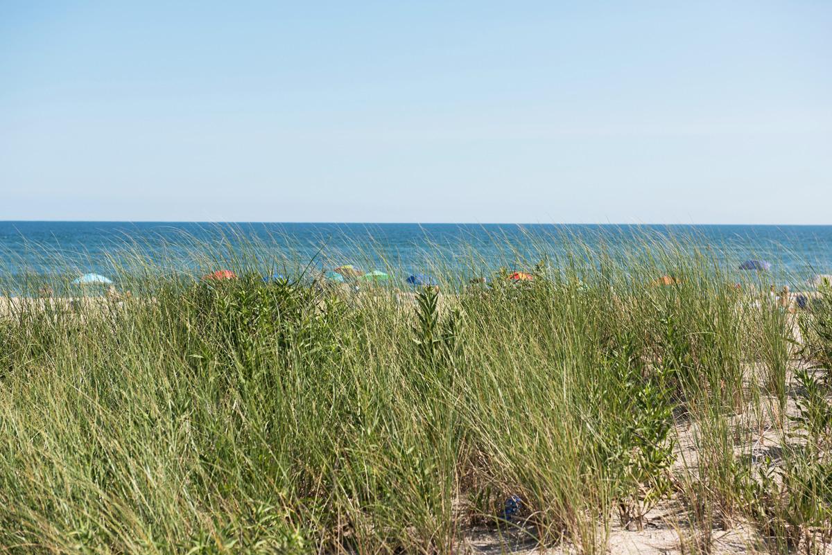 Sagaponack beach, Bridgehampton, New York, USA