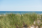 Sagaponack beach, Bridgehampton, New York, USA