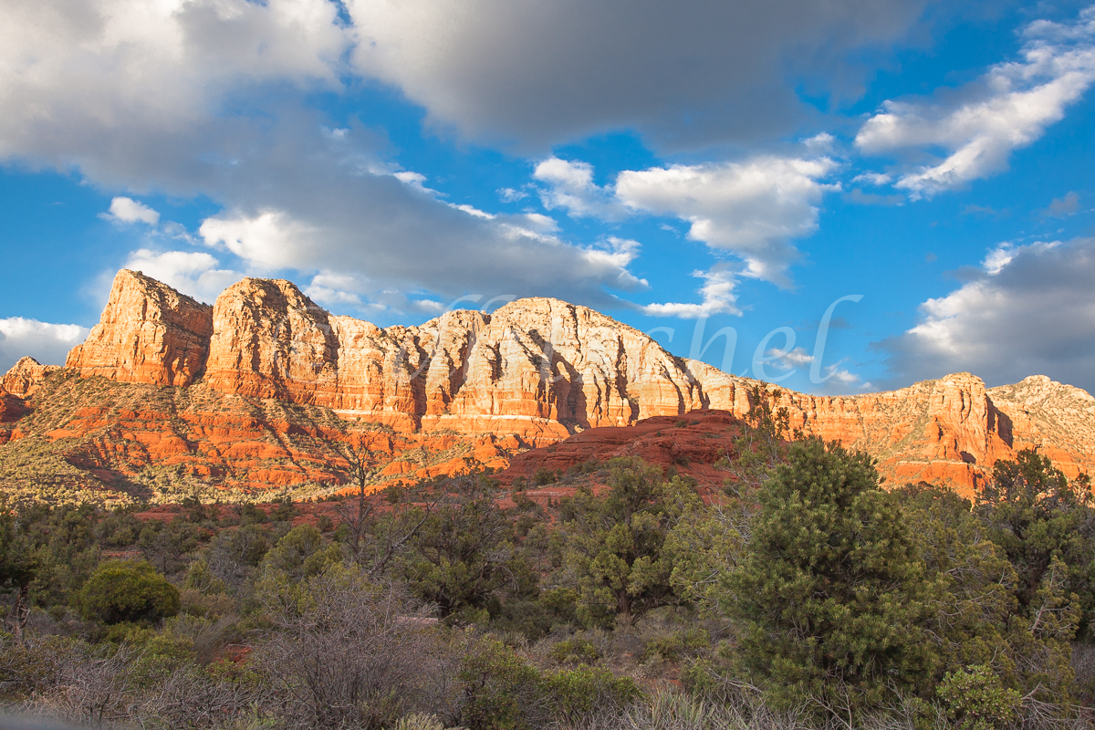 Arizona_Landscape-2520