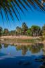 Landscape_across_pond-8893