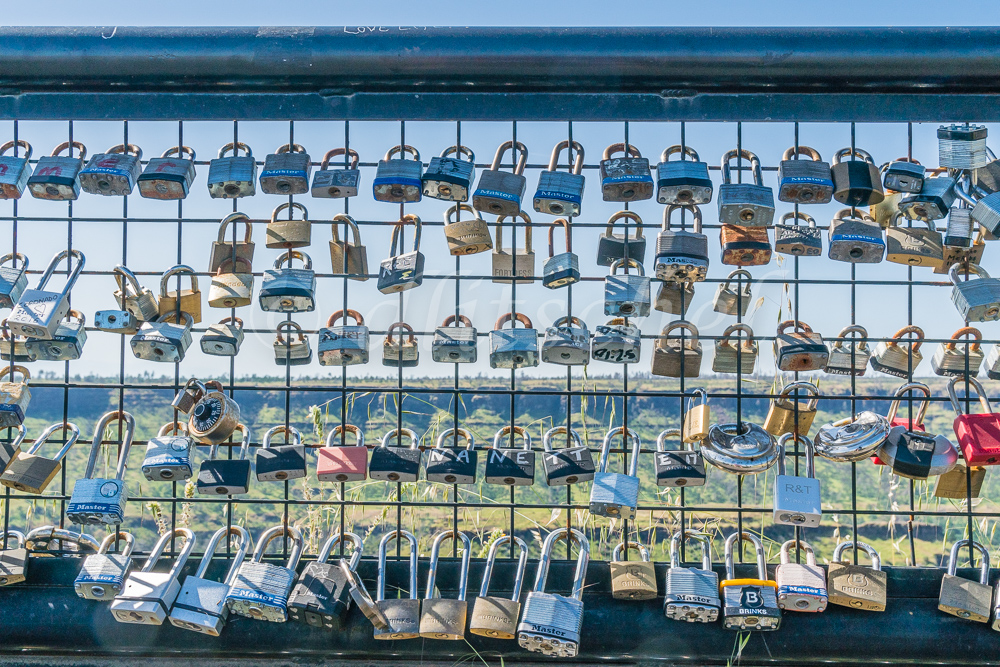Many lover's padlocks and other locks are locked to the fence overlooking the deep canyon at the Butte Creek Watershed Overlook in Paradise, California.