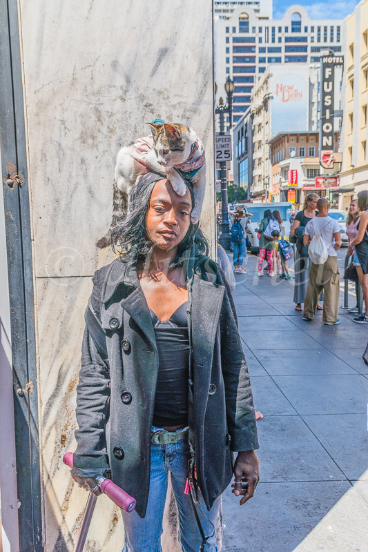 A pet cat rides through the streets of San Francisco on the head of her African-American female owner. The woman roams the tourist area near Powell street, collecting money from tourists taking her photograph with her cat.