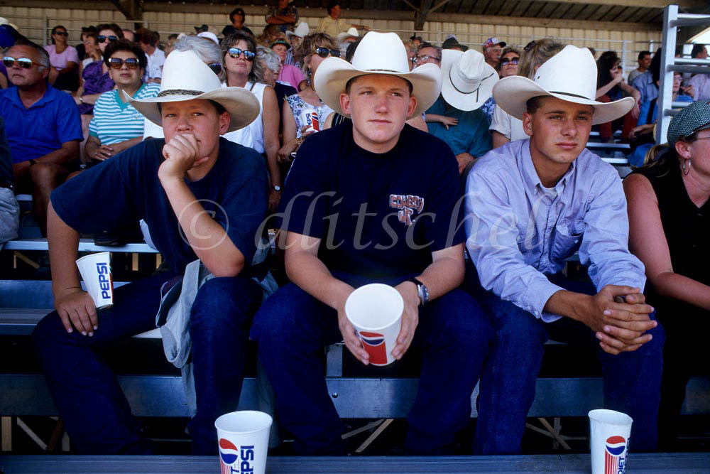Young cowboys sit in a crowd in the grandstands watching a rodeo in the Central Valley of California. To purchase this image, please go to my stock agency.
