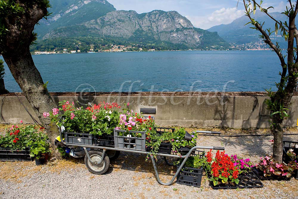 A flower cart sits on the walkway next to Lake Como in Bellagio, Italy. To purchase this image, please go to my stock agency click here.