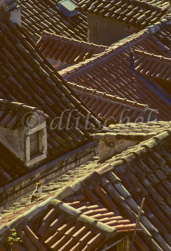 cr_rooftops