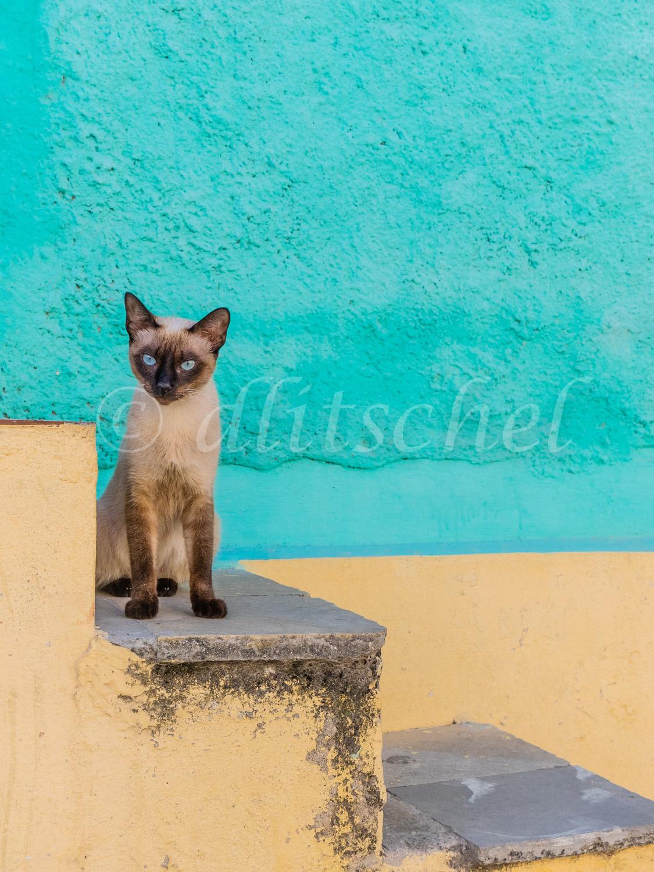 cuba_2015-3080143