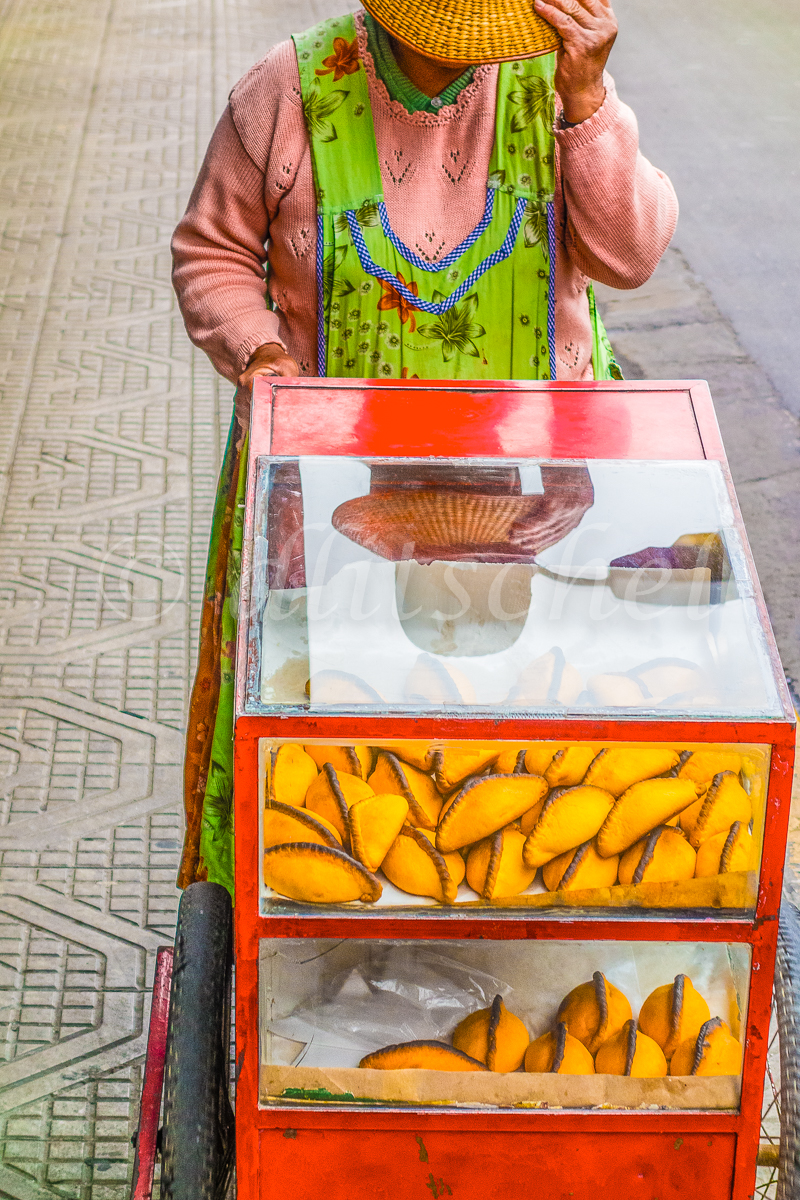 A middle-aged female street vendor pushes her wheeled cart selling embanadas in Cochabamba, Bolivia.