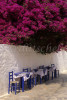 A giant bouganvilla plant overhangs the sidewalk cafe tables on the Greek island of Hydra, one of the Saronic Islands, located in the Aegean Sea between the Saronic Gulf and the Argolic Gulf. To purchase this image, please go to my stock agency click here.