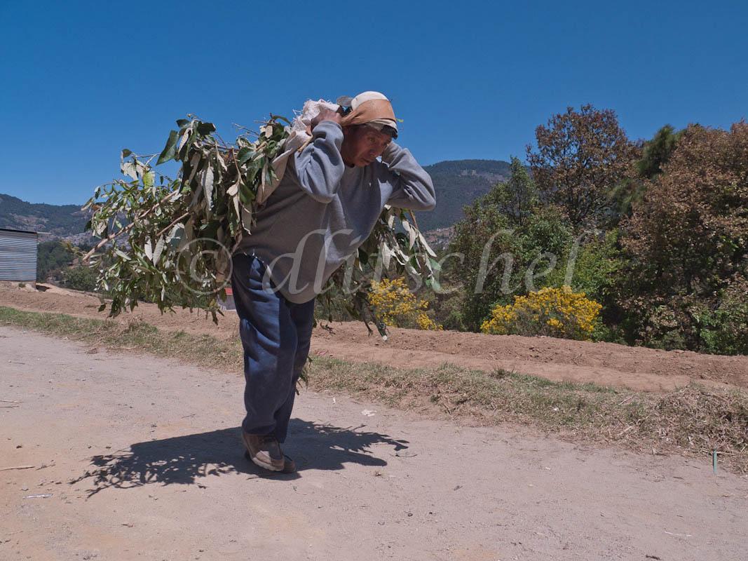 guatemala-1020239