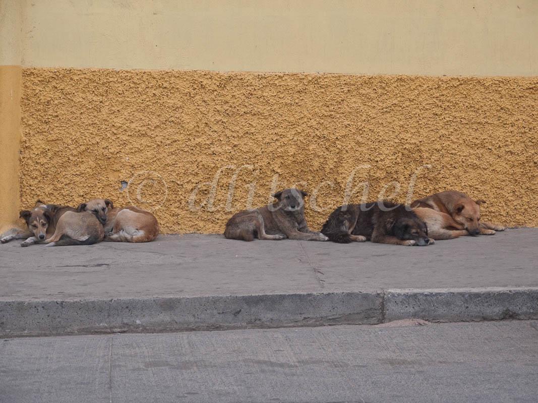 guatemala-1030067