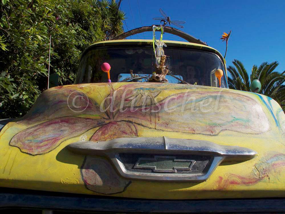 truck art, front view