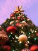 Detail of Christmas tree in La Cumbre Mall, Santa Barbara,CA