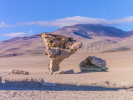 Stone Tree, Bolivian Desert