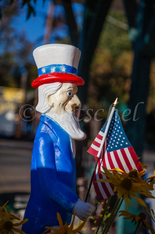 Patriotic statute