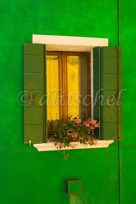 A brilliant green wall in Burano Island, Italy frames a gold refection in the window. To purchase this image, please go to my stock agency click here.