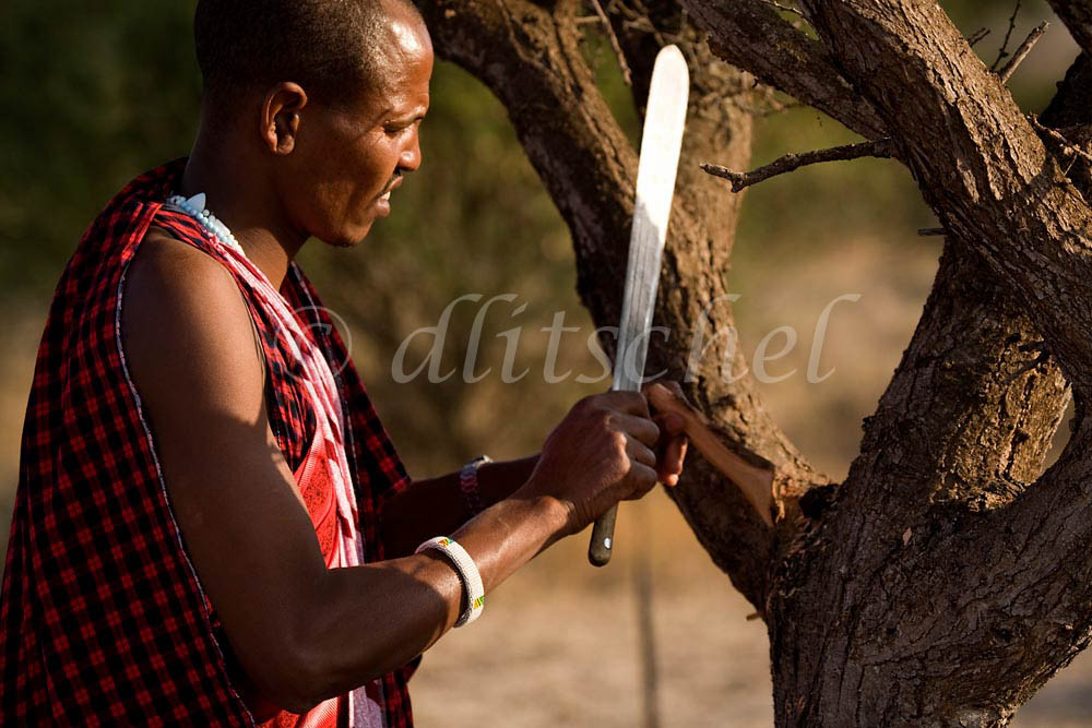 Masai warrior with machete shaping wood to use as a tool to start a fire. Sinya area of northern Tanzania. To purchase this image, please go to my stock agency click here.