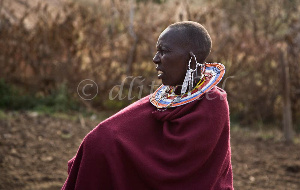 Profile of Masai woman in traditional dress and jewelry in northern Tanzania. To purchase this image, please go to my stock agency.