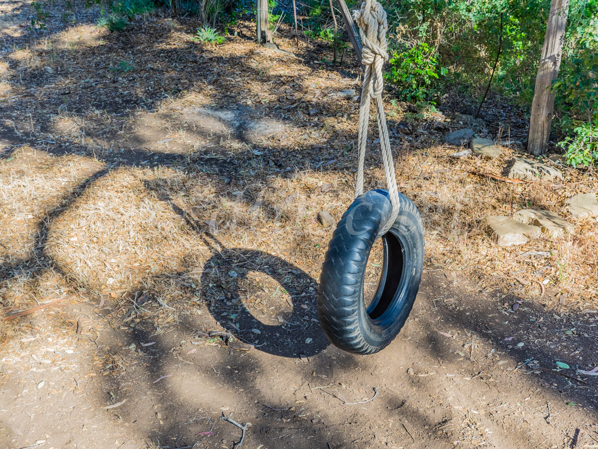 Tire Swing Santa Cruz Island, California. Santa Cruz Island is the largest of the eight islands in the Channel Islands of California.