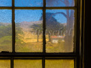 A view outside through a very dirty window of the bunkhouse on Santa Cruz Island on the Christy Ranch property on the island\'s west end.