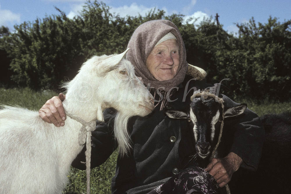 A woman holds her two goats by ropes around their necks in the Siberian countryside, in the Krasnoyarsk Krai region of Russia.