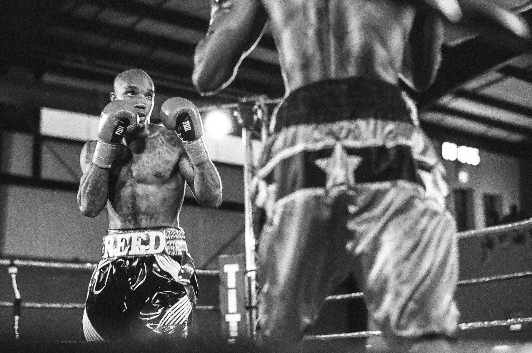 Boxing-May-2017-2
