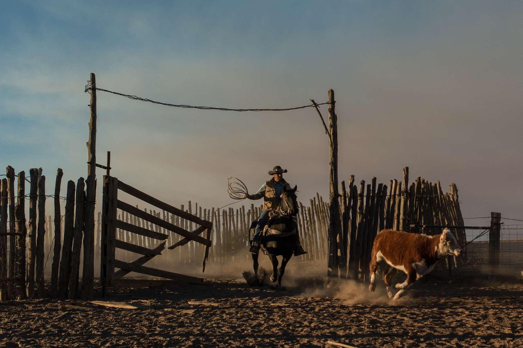 Western-Horseman-31