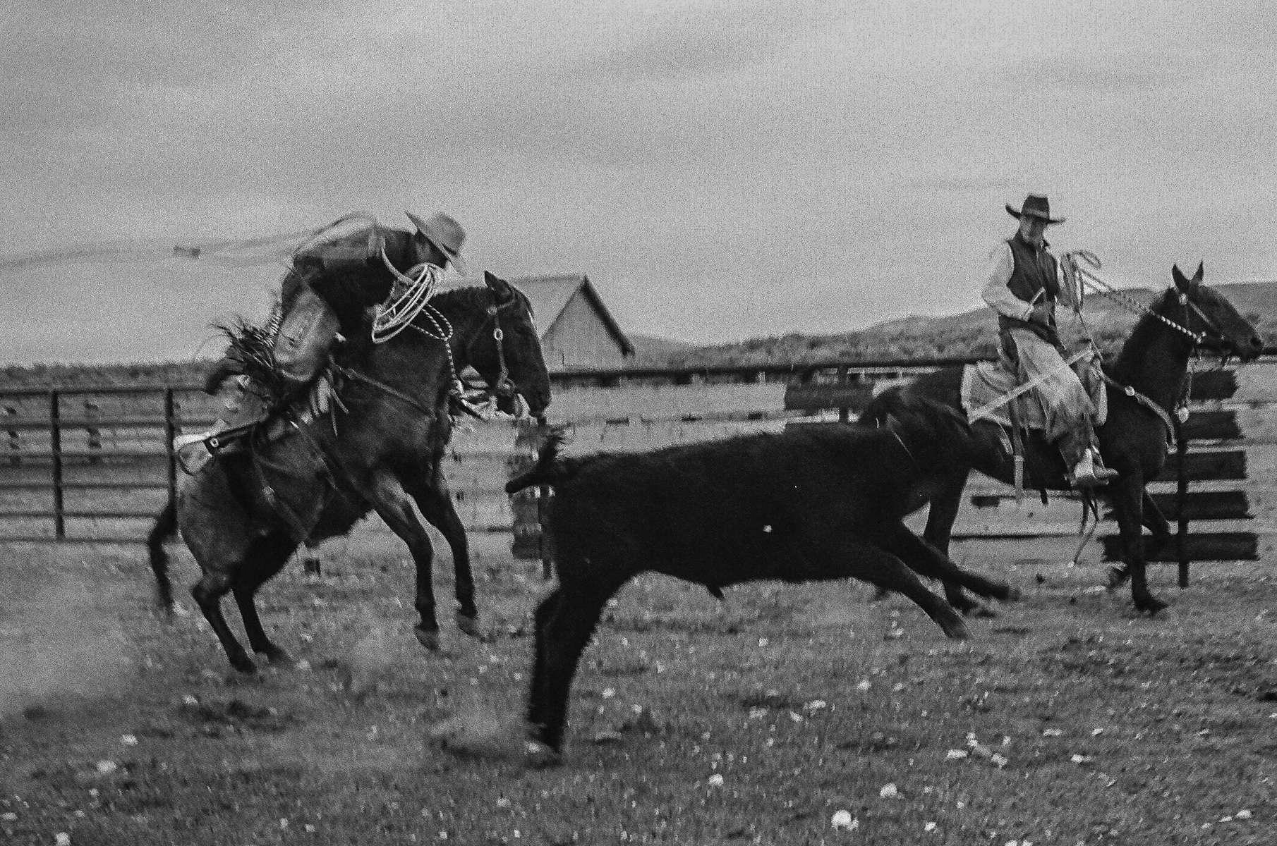 Yp Ranch Tuscarora Nevada Open Range John H Langmore