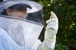 BROUSSARD__beekeeper