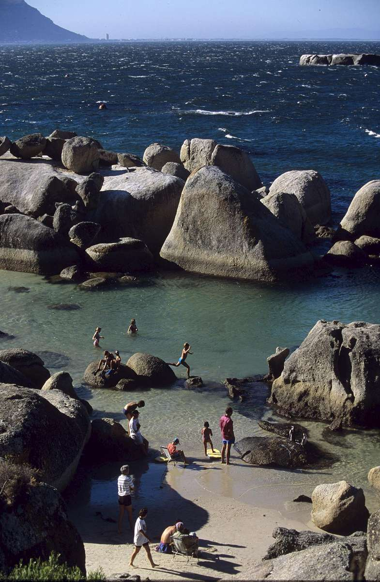 Boulders Beach in Cape Town is a popular spot for sunbathing and swimming.