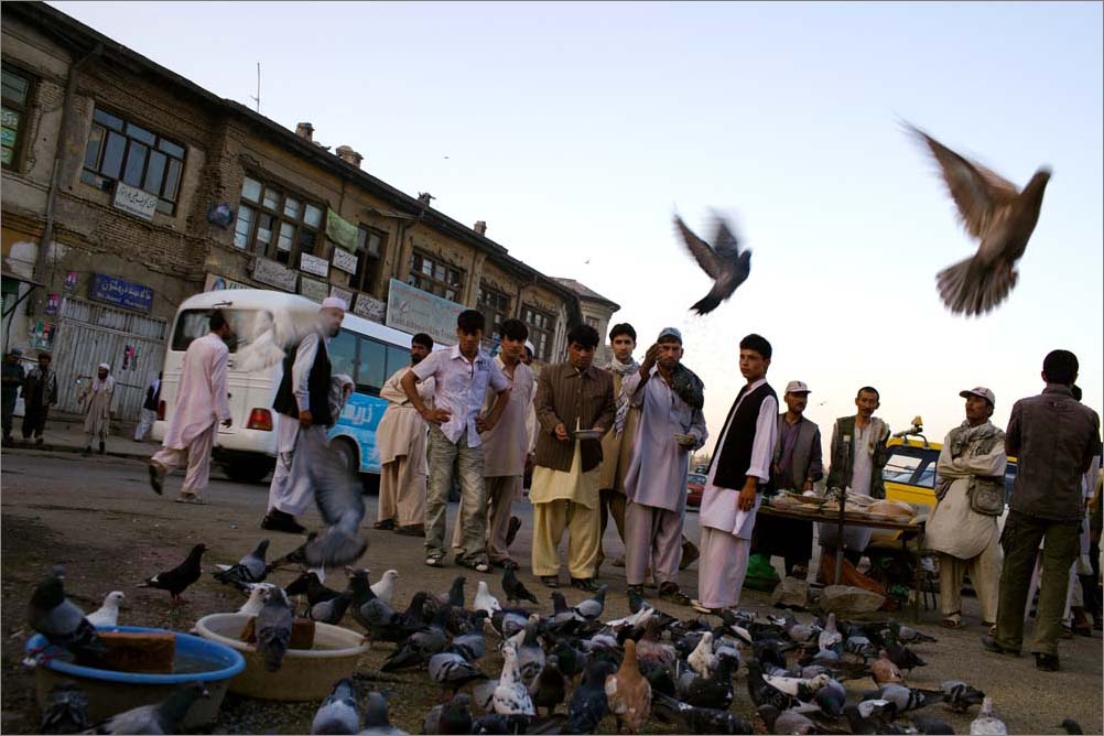 In downtown Kabul, Afghanistan, men gather outside a mosque to feed the local birds, August 2009.