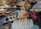 Wildflower blooms among tsunami damaged wreckage in Hamagurihama, Ishinomaki, Miyagi prefecture.