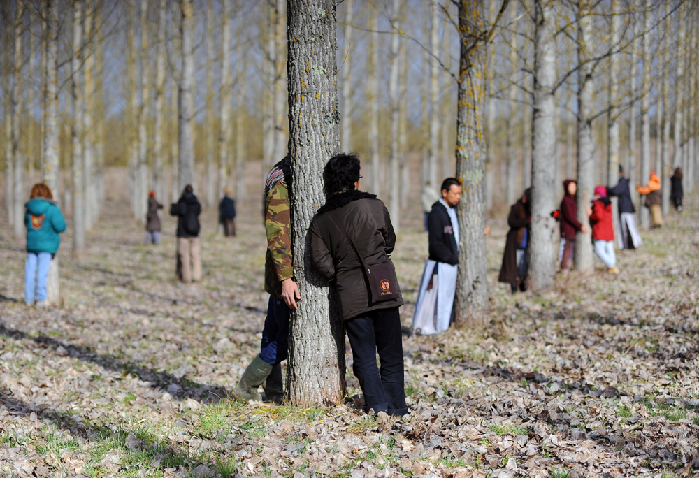 Laypersons and monks practice walking meditation in the  Lower Hamlet of Thich Nhat Hanh's Plum Village Monastery, France.