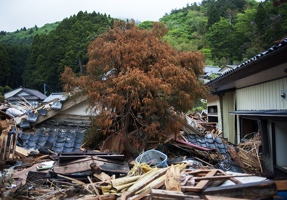 Withered tree among tsunami damaged wreckage in Hamagurihama, Ishinomaki, Miyagi prefecture.