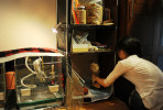 Mariko Nakano, 29, puts her pet owl, {quote}Maru-Roundishness in Japanese{quote} back into cage after feeding. 2013, Koto-ku, Tokyo, Japan.
