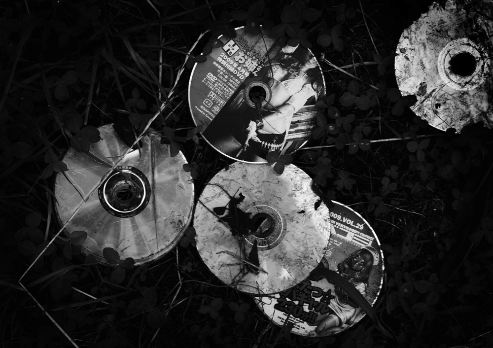 Discarded Porn DVDs on the lawn next to Building #24.                                                                                              2009/06/06