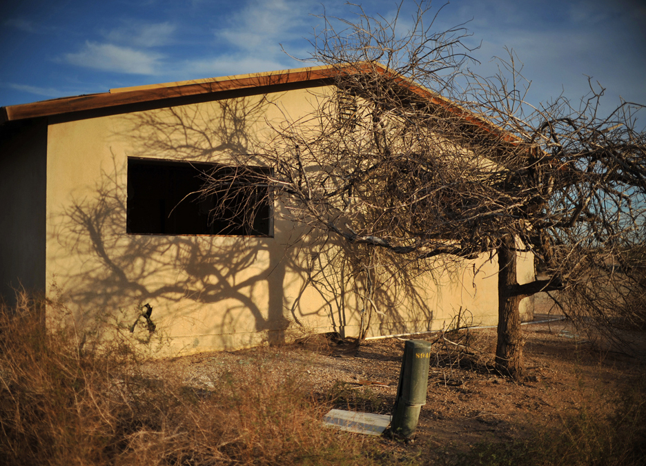 A dead tree casts its own ominous shadow on an abandoned house near Niland.
