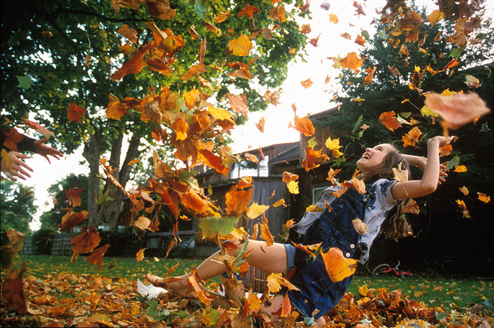 Laura Merrill,10,enjoys a shower of autumn leaves Sunday afternoon near the four corners of Elbridge,upstate NY.